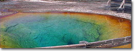 Morning Glory Pool -Yellowstone National Park