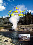 Yellowstone Park DVD